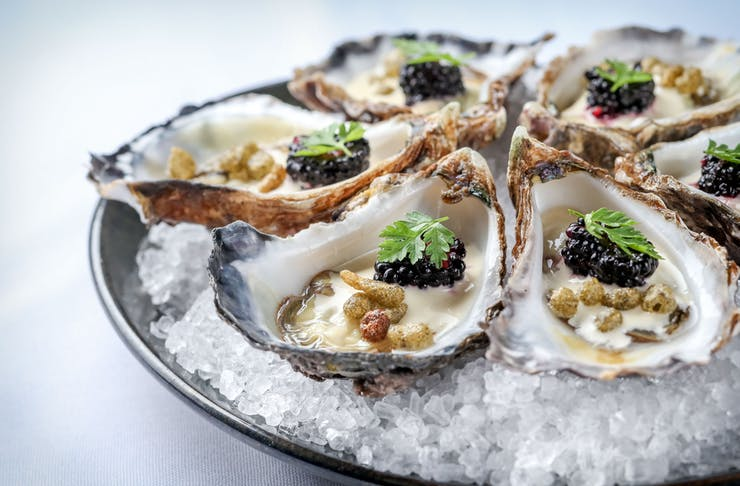 A plate of decorated oysters served on a bed of shaved ice.