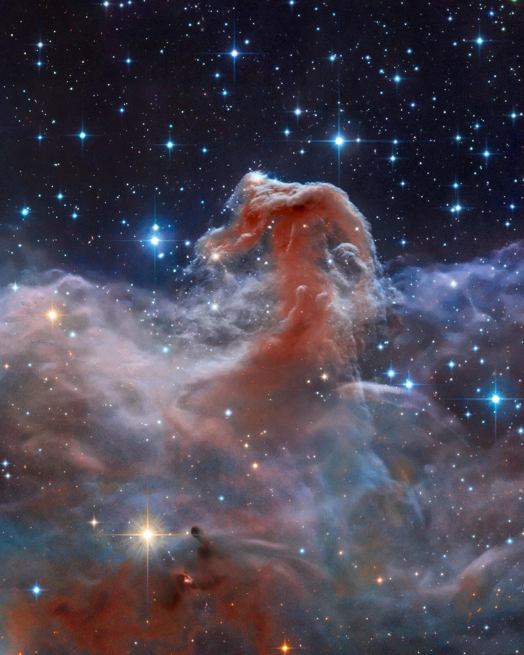 A rare horse-shaped nebula in the night sky.