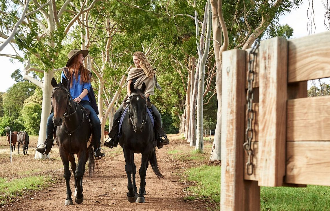 Two women riding on horses along a country trail