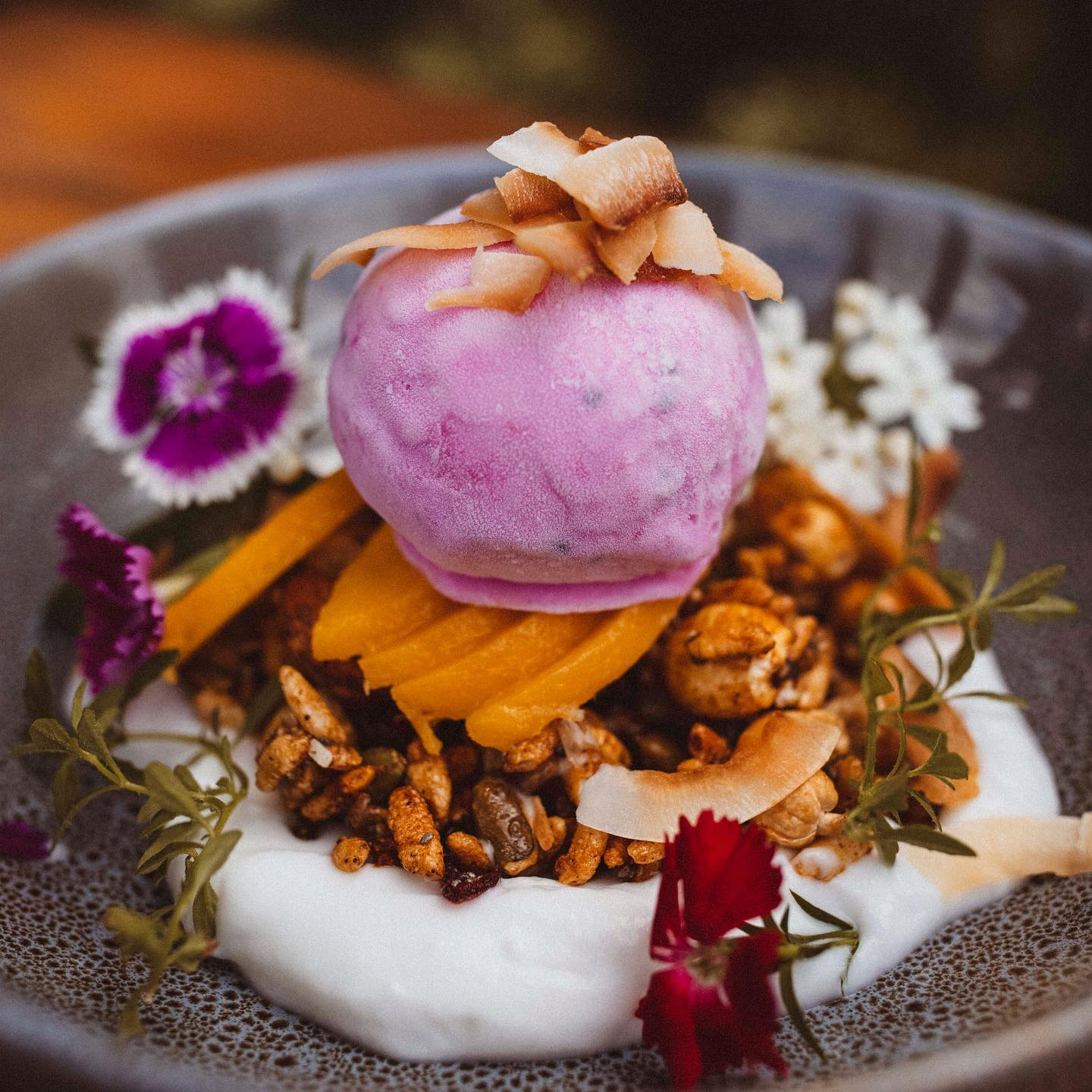 A plate with yogurt and musli topped with sorbet
