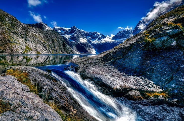 20 Things You Thought Would Happen When You Moved To New Zealand—But Didn't