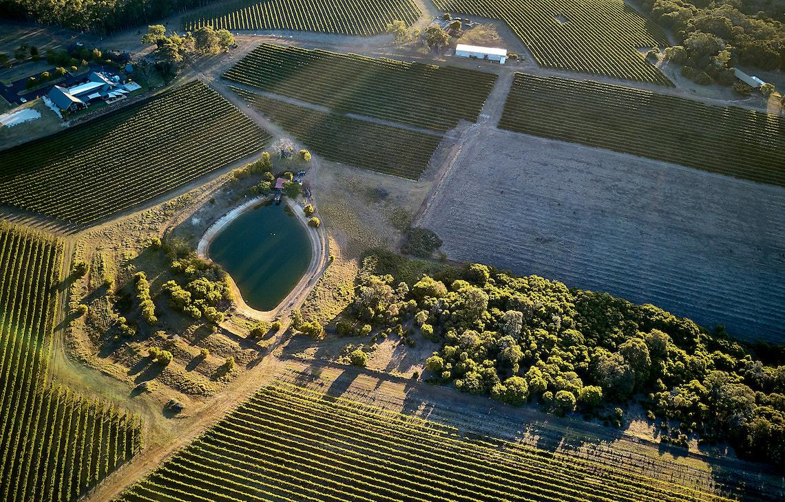 Aerial view of Wills Domain vineyards