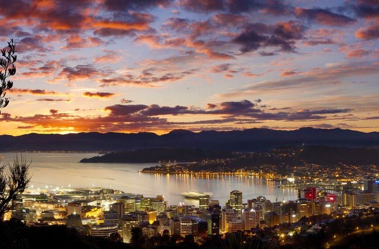 Wellington At Dawn. Your Guide To 24 Hours In Wellington