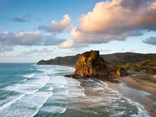 30 Reasons We Just Can't Leave Auckland