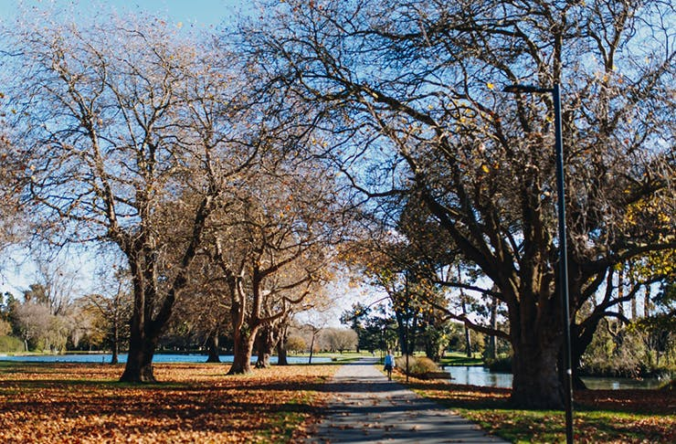 45 Things That Are So Christchurch It Hurts