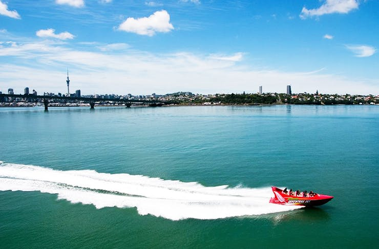 things to do in auckland, auckland events, what's on in auckland