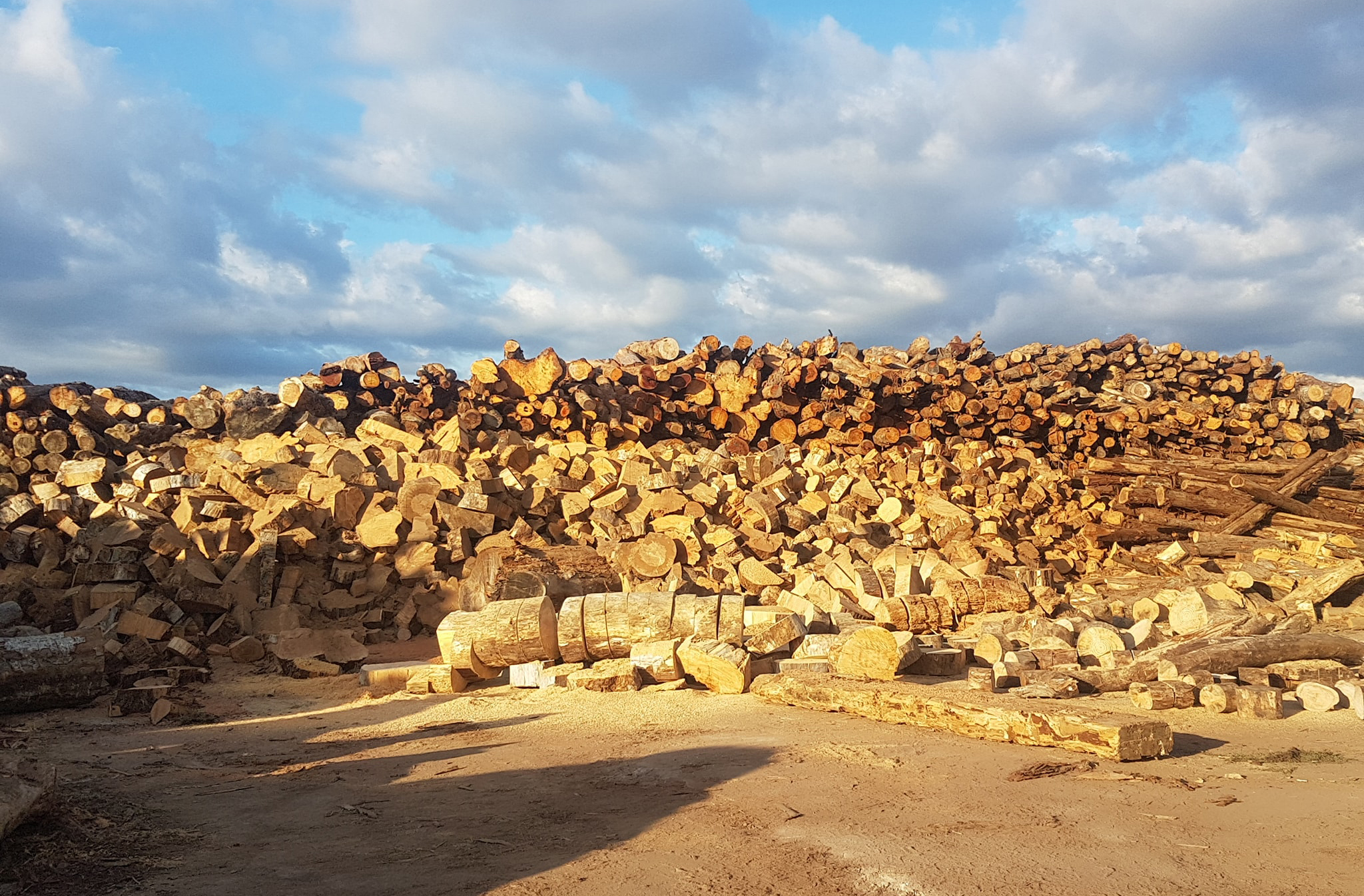 ignition firewood