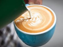 From Uh-oh To Pro | These Are The Coffee Courses You Can Actually Join