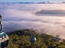 Take High Tea Above The Clouds Of Arthurs Seat  And Journey Through The Mornington Peninsula