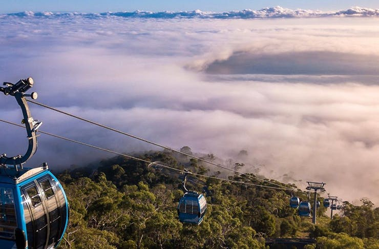 A shot from above looking down on the ski lifts above the clouds rising above the bush