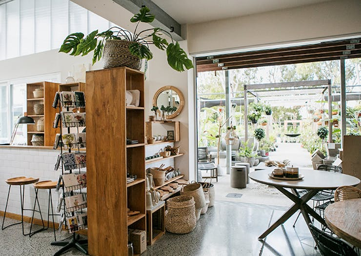We've Just Discovered A Hidden Oasis On The Coast And It's Got Indoor Plants Too