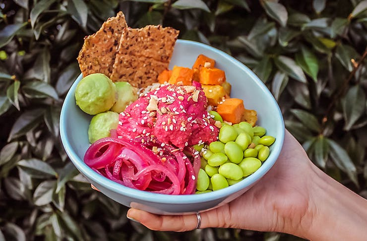 Auckland Gets Its First Plant-Based Food Truck