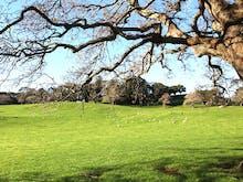 Auckland's Best Parks 2018