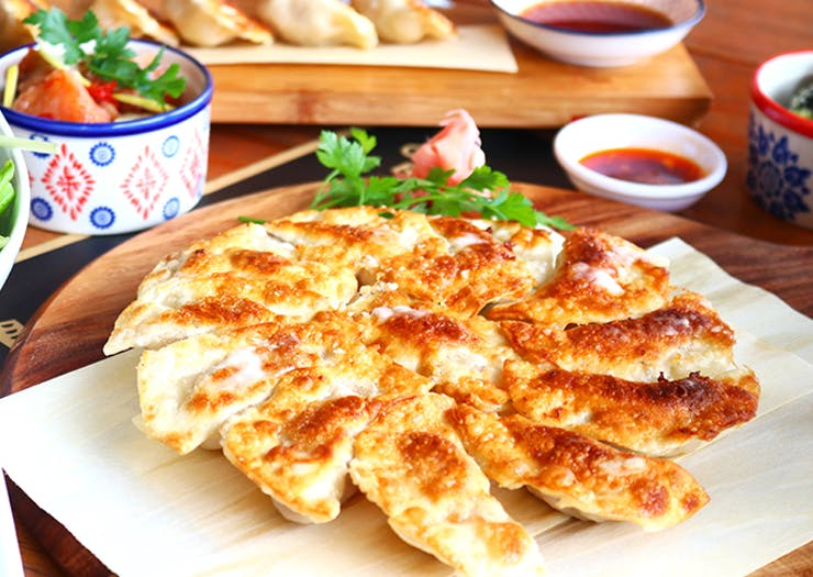 Auckland's Best Dumplings
