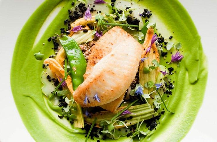 Auckland's Best Fine Dining Restaurants