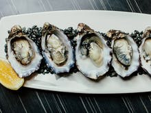 Aw Shucks! Where To Find Auckland's Best Oysters