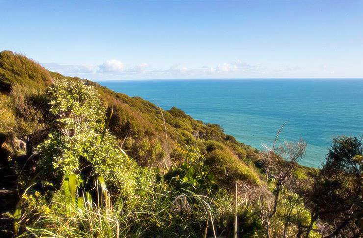 auckland's best walks and hikes, weekend walks