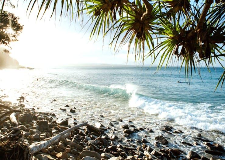 australia_day_sunshine_coast