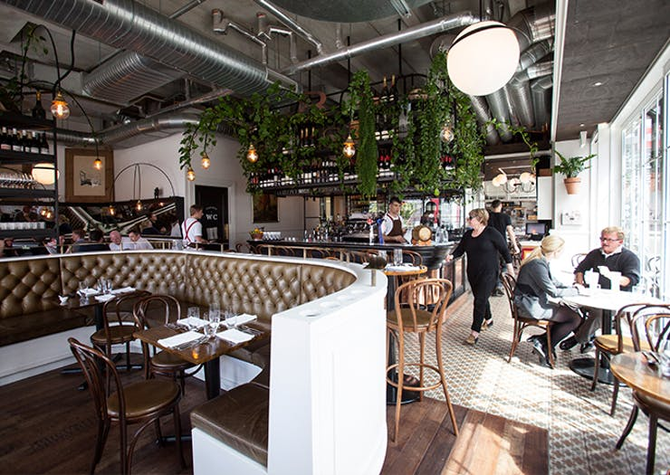 11 Restaurants Visitors To Auckland Should Absolutely Visit