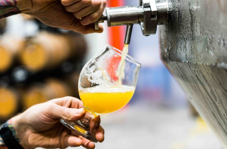 Close up of hands pulling a beer from a brewing tank into a glass.