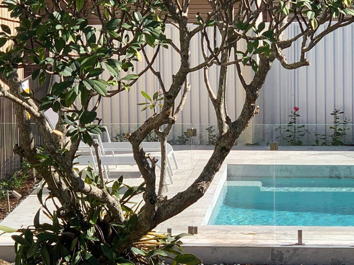 a pool seen through tree branches