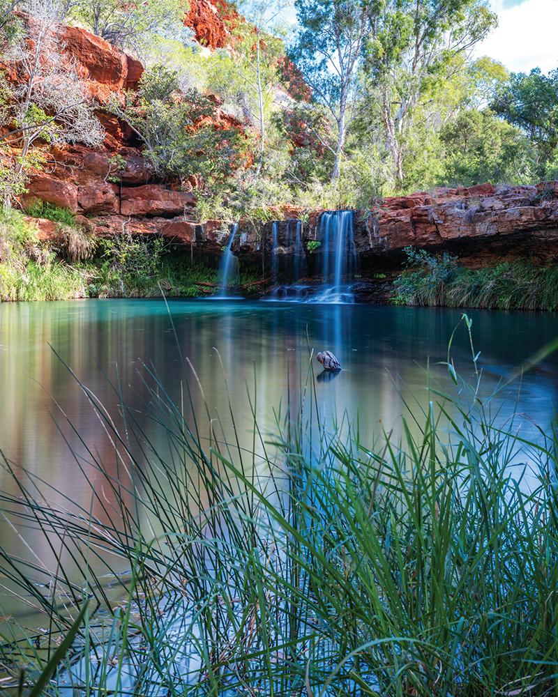 Fern Pool Tourism Western Australia