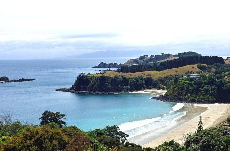 Auckland's Best Beach Day Trips