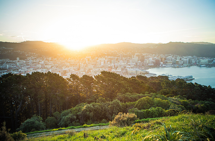 The Best Free Things To Do In Wellington