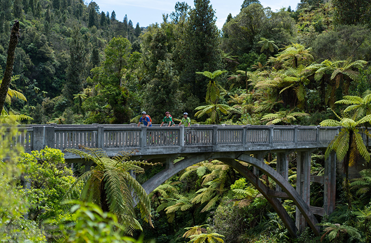 New Zealand's 9 Great Walks You Must Do