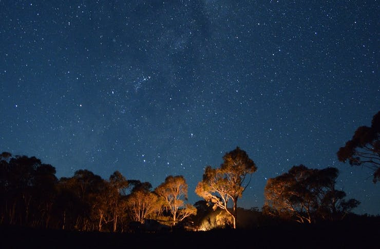 A blue, starlit sky with lit up trees below.