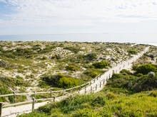 Take It Easy, Here Are Perth's Best Short Walks Under 4KM