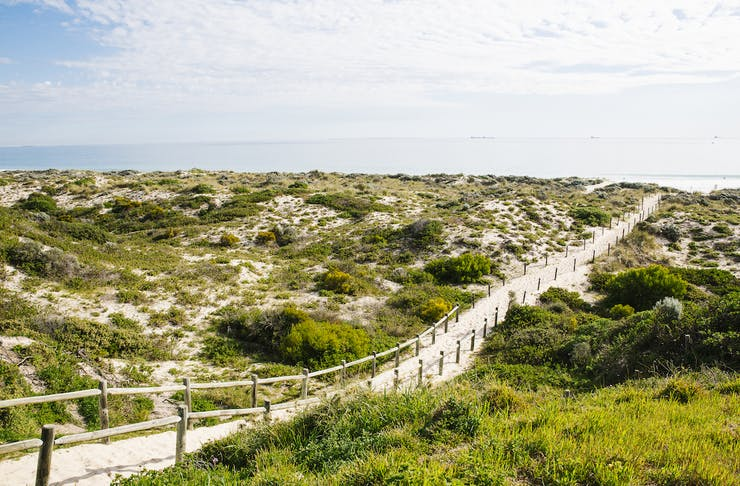 A trail leading to Trigg Beach