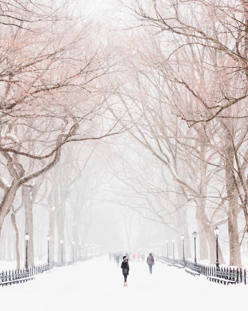 Best Walks NYC