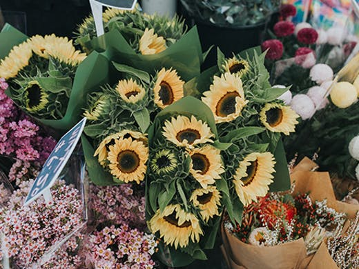 Currumbin Community Markets, Gold Coast Markets, Farmers Market
