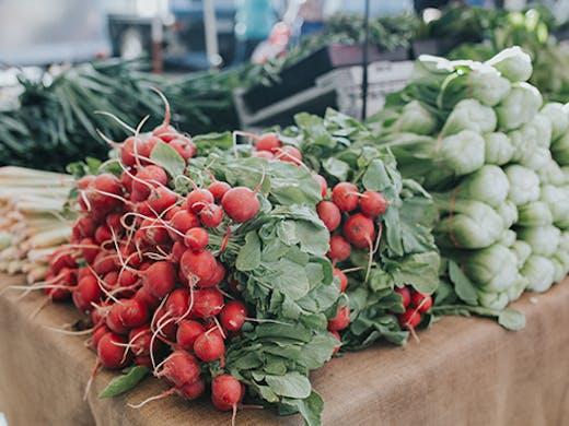 Gold Coast Organic Farmers Market Miami