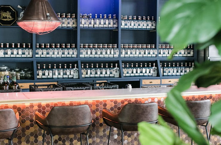 the bar with shelves lined with bottles
