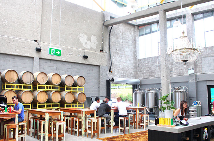 Auckland's Best Day Drinking Spots