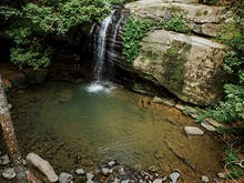 11 Amazing Things To Do In Buderim