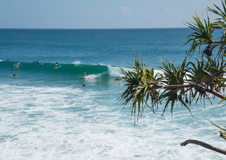 Gold Coast, Things To Do Gold Coast