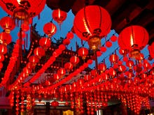 Year Of The Dog | Where To Celebrate Chinese New Year In Brisbane