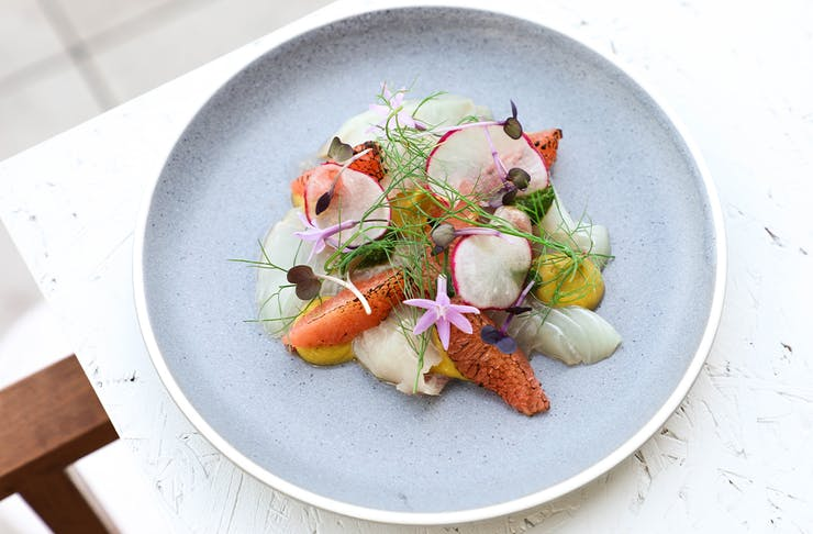 a plate of cured fish and garnishes