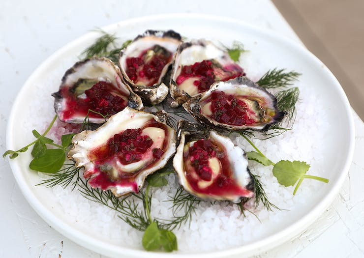 a plate of oysters topped with a beetroot jam
