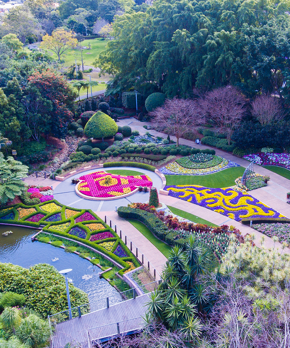 An aerial shot of vibrant flower gardens at Roma Street Parkland