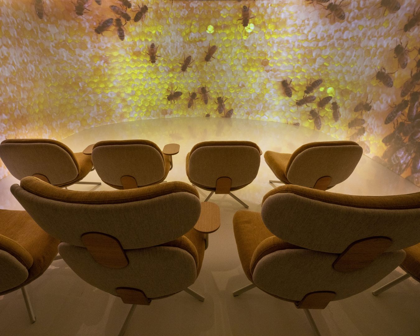 A 180 degree theatre displaying the insides of a hive
