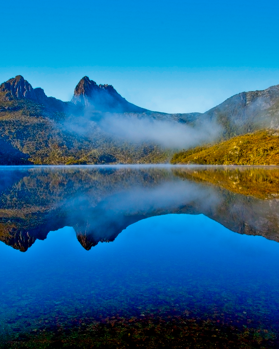Cradle Mountain looms above a lake, in which it's reflection shows in the glass-like lake.