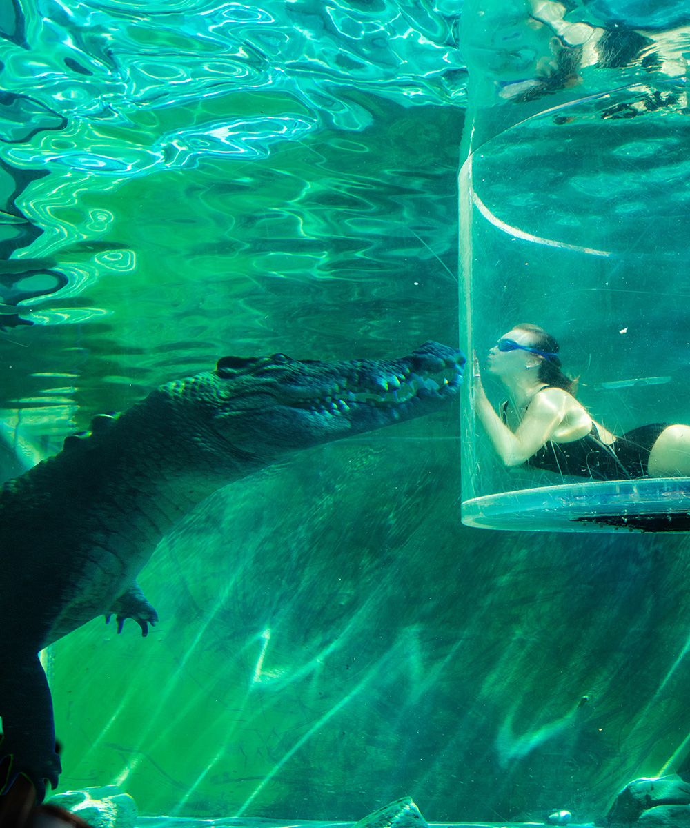 A person in the 'Cage Of Death' at Crocosaurus Cove