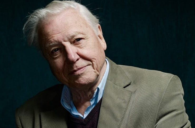 david attenborough coming to sydney