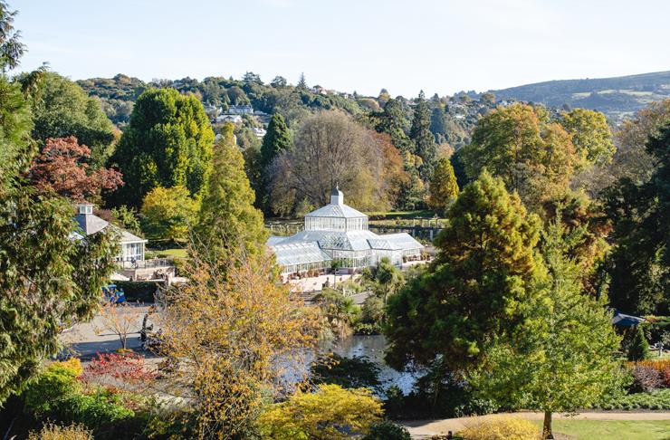 Beautiful scenic view of Dunedin's Botanic Gardens