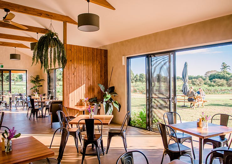 Farm and Co Cafe Cudgen