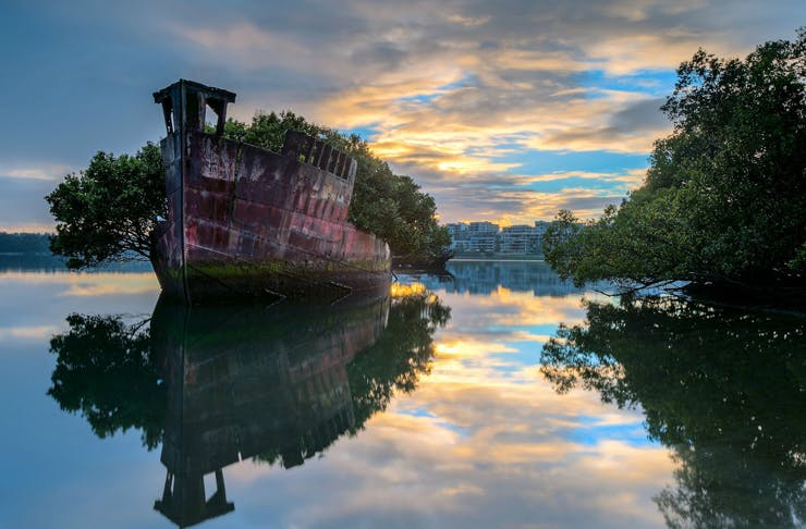 Sydney Secrets | Add The Floating Forest To Your Insta Bucket List